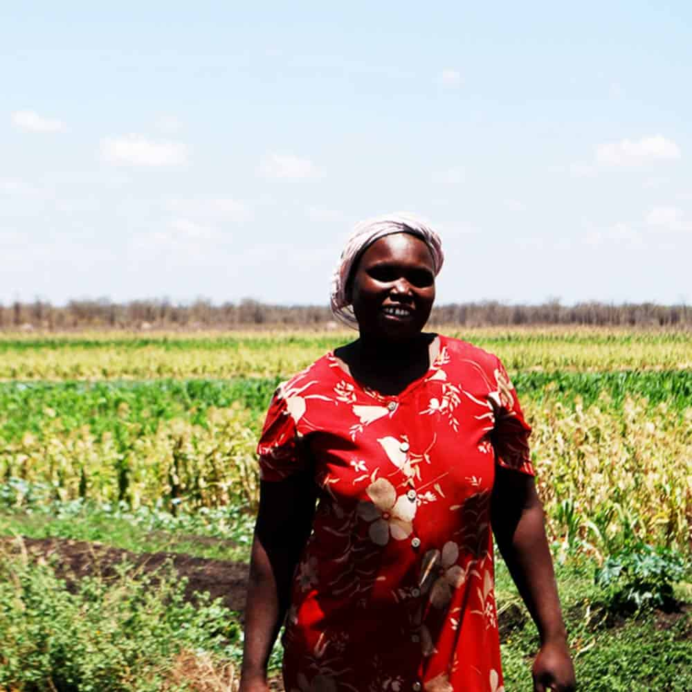 Happy African lady in maize field